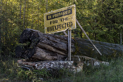 Be prepaired for the unexpected (J. Gschwender) Tags: unexpected beprepaired vancouverisland canada kanada