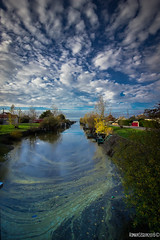 Le canal (Monsieur Gina) Tags: canal briere brivet trignac saintnazaire pont paille pecherie