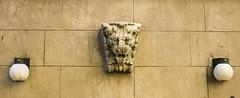 Lion on West 91st Street (Ed Newman) Tags: gargoyle sculpture newyork newyorkarchitecture newyorkcity gothamist upperwestside