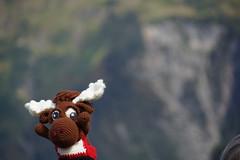 DSC01549 (The Crochet Crowd) Tags: crochetmoose amigurumi moose crochet doll alaska britishcolumbia thecrochetcrowd michaelsellick jeannesteinhilber danielzondervan crochetcruise mooseontheloose