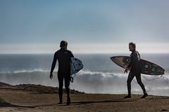 ArchitectGJA-1652.jpg (ArchitectGJA) Tags: lighthousepoint surfing californiababy hurley wetsuit santacruz ripcurl xcel lighthousefield california beach marineanimals coast cliffs streetphotography waves surfingsteamerlane oneill coastlife steamerlane montereybay