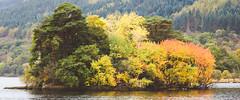 Loch Lomond colours (r_macnamara) Tags: autumn loch lomond scotland