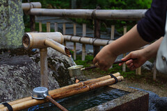 Purification (StephanExposE) Tags: japon japan asia asie stephanexpose arashiyama kyoto tenryuji bambou canon 600d 1635mm 1635mmf28liiusm forest fort nature temple