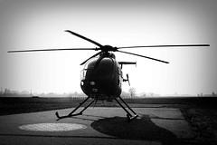Aeronautica Militare (Luca Nicolotti) Tags: helicopter sar sarhelicopter searchandrescue militaryhelicopter hospitalhelicopter elicotteri elicottero elicotterista elicotteristi demo demosar ricercaesoccorso canonef100400 canon canoneos7dmarkii canonef24105 jetphotosnetnicl1984 macbookpro15 macintoshapple lucanicolotti1984 aviation aviationphoto aviationphotographer canonaviation bredanardi nh500 ami aeronauticamilitareitaliana