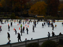 Central Park New York November 2016 (1230) (Richie Wisbey) Tags: new york central park manhattan ulmsted man made vista view spectacular miles walks lakes ice rink trump feeding sparrows hot dog american space open public beauty bow bridge oak trees grass richie richard wisbey flickr explore exploring zoo