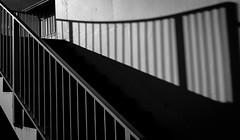 Handrail (Rogpow) Tags: isleofwight ryde fujifilm fuji fujixt1 mono blackandwhite shadows lightandshadows shadowsandlight steps stairs