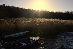 CLARITY (M.KOWSKY) Tags: boats boat winter wind storm water reed maritime nature sun scenery