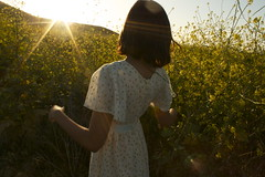 IMG_8893 (milkteeths) Tags: california sunset woman nature girl field fashion meadow romantic southerncalifornia orangecounty wildflower yellowflowers goldenhour sunflare whitedress