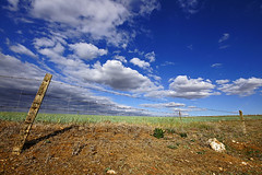 De paseo con el nuevo 10mm!! (kico250) Tags: naturaleza nature landscape paisaje colores badajoz cielo nubes campo trigo arado extremadura franciscodecordoba sonyalpha pico250 lacoronada extremaudra kico250