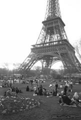 Idyllic scene at the Eiffel Tower