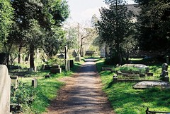 Yate Cemetery (Josh Moss [EVM]) Tags: road flowers trees sky green film nature cemetery field grass bench downs bristol cornwall skies natural olympus om10 fields filmcamera filmgrain olympusom10 carnon yate carnondowns