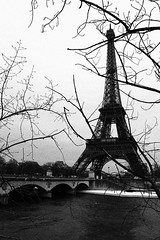 Winter in Paris (Shaun Pham) Tags: travel winter blackandwhite bw paris france tower europe eiffel