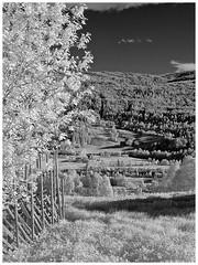 Romsdal IR (2) (KvikneFoto) Tags: ir norge natur infrared landskap kvikne infrardt
