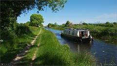 Cruising on the Royal (bbusschots) Tags: ireland summer boat canal maynooth pathway kildare