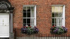 door/windows (laughlinc) Tags: door flowers kilkenny ireland windows reflection building architecture foliage lightroom windowboxes 1755mmf28 nikond80 thechallengefactory laughlinc lr5beta kilkenneycounty