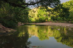 Quebrada (Anatomista_) Tags: trees light reflection luz water ro river agua rboles day reflejo da quebrada