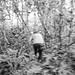 """Correndo com o Sr. Emilson no mato para alcançar uma vara de macacos. • <a style=""""font-size:0.8em;"""" href=""""http://www.flickr.com/photos/39546249@N07/9705786614/"""" target=""""_blank"""">View on Flickr</a>"""