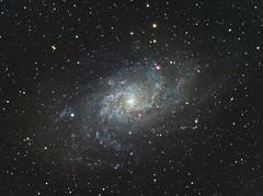 M33 - The Triangulum Galaxy (matt_ccd) Tags: derbyshire galaxy m33 triangulum baader fsq106ed Astrometrydotnet:status=solved neq6pro qhy9m Astrometrydotnet:id=supernova8185