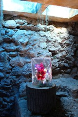 Gelat de flors (Albert T M) Tags: catalonia girona catalunya catalogne gironès tempsdeflors