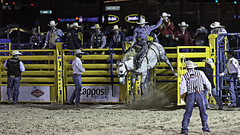 02468586-69-Saddle Bronc Riding at the 2015 Helldorado Rodeo-1 (Jim There's things half in shadow and in light) Tags: usa southwest sports animal america cowboy lasvegas nevada places american rodeo canon70200lens canon5dmarkiii helldoradodaysrodeo
