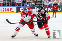 "IIHF WC15 SF Czech Republic vs. Canada 16.05.2015 020.jpg • <a style=""font-size:0.8em;"" href=""http://www.flickr.com/photos/64442770@N03/17744057186/"" target=""_blank"">View on Flickr</a>"