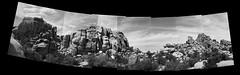 CanonEOS1n_HP5+007-Edit-2.jpg (Michael Bartosek) Tags: bw canon 150 ilfordhp5 35mmfilm 50mmf14 joshuatreenationalpark bwfilm canoneos1n fomadonr09