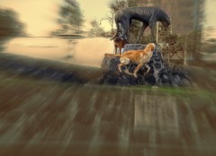 VISITANDO A SU QUERIDO Y EXTRAADO AMIGO EL PERRO SOLOVINO (FOTOS PARA PASAR EL RATO) Tags: cdmx curiosas street escultura calle perros dog