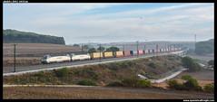 TECO en Vilanova del Valls (javier-lopez) Tags: ffcc railway train tren trenes adif renfe mercancas teco contenedor contenedores 252 mm dt mandomltiple dobletraccin sdggmrss sdggmrs db msc mediterraneanshippingco cma cgm duisburgruhrort lesoler lmiteadiftpferro figueres barcelonamorrot vilanovadelvalls tnel puente viaducto crcel prisin globo aerosttico niebla 26092016