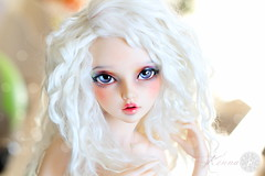MNF Celine - Kenna (Kiky) Tags: celine mnf minifee doll poupe blanc blanche wig white pastel boucls curly curl hair