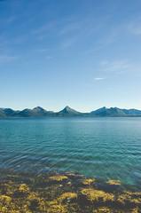 Straumfjorden (Jaime Prez) Tags: noruega ocean ocano fiord norge water mountains montaas fiordo algas norway fjord agua noreg alger seaweed