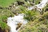 DSC_4054 (d90-fan) Tags: rauris raurisertal natur alpen salzburgerland österreich nationalpark npht hohe tauern wandern krumltal seidlwinkeltal