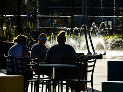 Birds of a Feather (Steve Taylor (Photography)) Tags: fountain margaretmahy playground coffee bird seagull gull chair table lowkey fun bored cool lady woman women newzealand nz southisland canterbury christchurch cbd city silhouette glow water autumn sunny sunshine backlit
