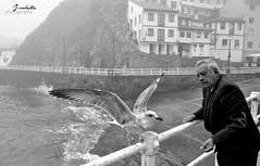 Be Free (IsabelleLC) Tags: old sea mar gaviota cudillero
