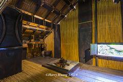 Harry_31418,,,,,,,,,,Formosan Aboriginal Culture Village,Nantou (HarryTaiwan) Tags:          formosanaboriginalculturevillage nantou     harryhuang   taiwan nikon d800 hgf78354ms35hinetnet adobergb