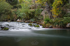 Green love (michelangelo_84) Tags: nikon d5100 logroo larioja spain espaa le longexposure largaexposicion silk water silky river nd64x rio agua seda 30sec forest wood tree nature fall autumm otoo bosque naturaleza nikkor35mm18 35mm landscape paisaje