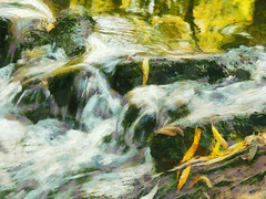 Winter Water and Autumn Leaves (Steve Taylor (Photography)) Tags: winter ripple art digital green yellow white mauve stone rock water river stream newzealand nz southisland canterbury christchurch willowbank wildlifereserve leaves texture reflection