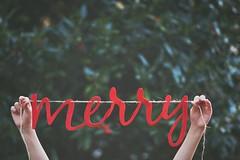 Merry & Bright (Darlajean1984) Tags: merry holly christmas season banner script