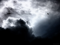Into the clouds (RIS'n'RAS) Tags: cumulus cloud storm black white monochrome airbus a320 sky plane airplane