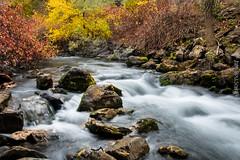 ogden canyon (cuddleupcrafts) Tags: ogden utah canyon fall autumn water stream rocks