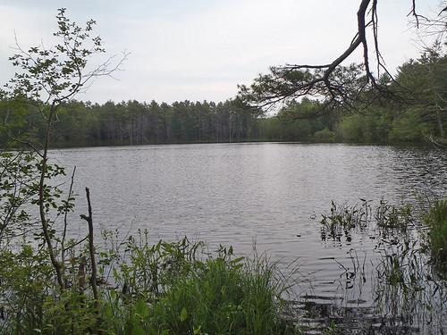 Chaffin Pond - www.amazingfishametric.com