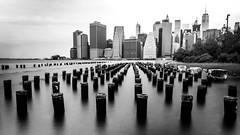 New York (TS_1000) Tags: newyork newyorkcity ny nyc brooklyn brooklynbridgepark sw bnw bw monochrome skyline manhattan olympus