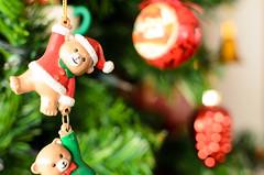 #AM Que oso! (FernandoRueda) Tags: december diciembre red green christmas navidad 7dwf bucaramanga rojoyverde redgreen