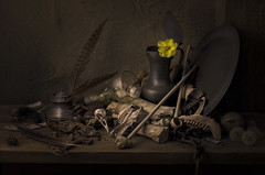 It's Been a Long Time (GARY HICKIN (GAZART)) Tags: justpentax stilllife glass spectacles pipe bones skull jawbone inkwell quill feather pewterplate jug flower dahlia yellow k5 vanitas time flagon claypipe roemer dice acorn key chain rust dandelion seed pinecone