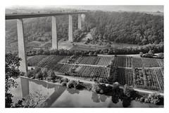 Moselbrcke (BKFofOF) Tags: a61 x100t fujifilmx100t architektur rheinlandpfalz autobahn wein lkw mosel schwarzweiss
