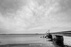 DSC00235 (grahedphotography) Tags: resundsbron resund oresund sweden swe denmark a7ii a7mk2 nature natur water ocean hav bridge beach blackandwhite grey malm limhamn