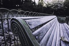 Battersea Park 2 (katarzynaadamczyk) Tags: battersea park london west autumn canon tokina1116
