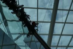 DSC04270 (oliveplum) Tags: decoration christmas capitolpiazza ceiling ball olympusomsystemzuikomcautot12f85mm sony singapore