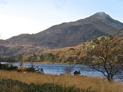 6145 Llyn Gwynant in Nant Gwynant (Andy - Busyyyyyyyyy) Tags: 20161119 autumncolour eryri lake lll llyngwynant mmm mountain nantgwynant nnn snowdonia trees ttt valley vvv water www