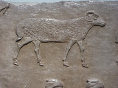 Ram (Aidan McRae Thomson) Tags: nimrud relief britishmuseum london assyrian sculpture mesopotamia ancient