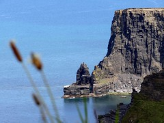 Cliffs of Moher, County Clare, Ireland(7) (Anne O.) Tags: 2014 clare cliffsofmoher countyclare irland klippenvonmoher panoramio6954847110188454
